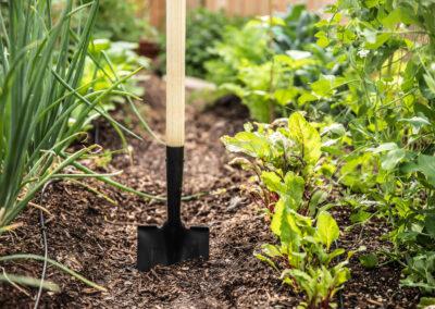 Growcentia Announces Mammoth Garden Brand And Entry Into Consumer Garden Market